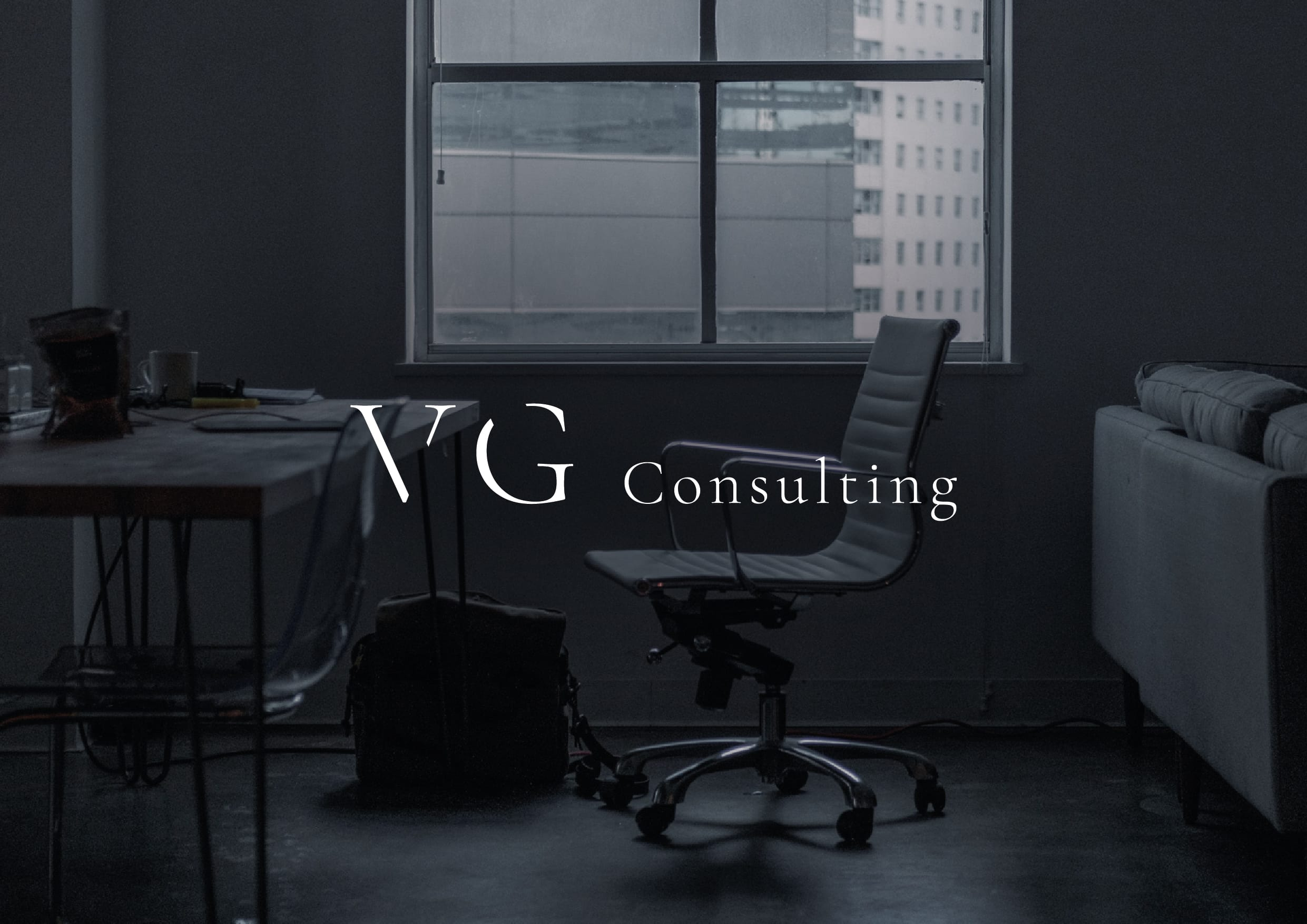 VG Consulting